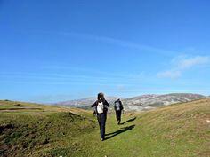 Paseando por la sierra de Aralar... #Navarra --> http://www.turismo.navarra.es/esp/organice-viaje/recurso/Patrimonio/3064/Sierra-de-Aralar.htm