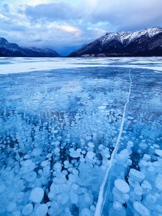 The artificial lake is located on North Saskatchewan River in western Alberta, Canada. When plants on the bottom of the lake release air, it floats up towards the surface but then freezes because of the lake's extreme temperatures.