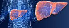 New treatment for rare, chronic liver disease Alternate for patients unable to use other approved therapies