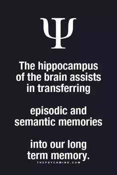 the hippocampus of the brain assists in transferring episodic and semantic memories into our long term memory. Psychology Facts Dreams, Psychology Says, Brain Facts, Science Facts, Physiological Facts, Strong Women Quotes, Self Motivation, Some Words, Weird Facts