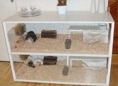 Guinea pig cages on pinterest guinea pigs guinea pig for Guinea pig cage made from bookshelf