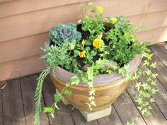 Planting A Fall Container Garden in the Mountains - Murphy, North Carolina