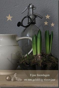 Moule a gateau avec plantes, j'aime Home & Lifestyle