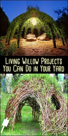 Could you use a unique centerpiece and personal retreat in your backyard or garden? You can never go wrong with these living willow structures!