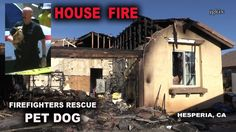 House Fire -  Firefighters Save Pet Dog