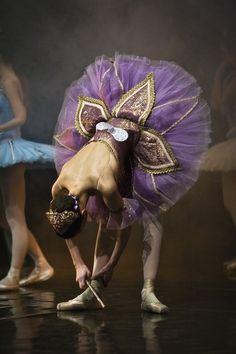 fleur de ballet