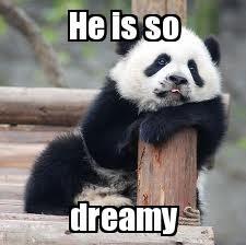 A Vida Nao Ta Facil Nem Pros Pandas