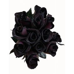 Black Roses Bouquet by Flower Explosion Real Fresh Tinted Black Roses... (€73) ❤ liked on Polyvore featuring home, home decor, floral decor, black home accessories, flower home decor, black home decor, flower stem and black rose bouquet