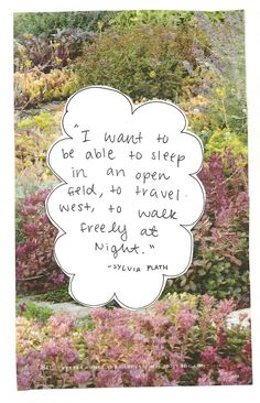 I want to be able to sleep in an open field, to travel west, to walk freely at night -sylvia plath quote