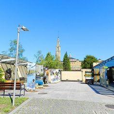Por esta puerta entrarán y saldrán durante todo este fin de semana #Calabazas #Calaveras #CalabazasyCalaveras #Sustos... y mucho más. ¡Hazte sitio!  #Otoño #Autumn #Fall #Jardín #Botánico #Atlántico #Atlantic #Botanic #Garden #Gijón #Xixón #Asturias #Asturies #AsturiasConSal #GijonAsturiasConSal #GijonNorthernSpainWithZest