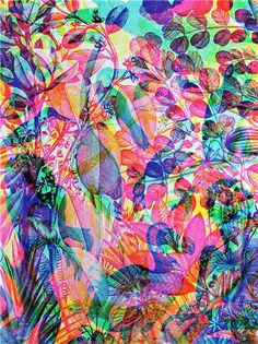 JAGUARSHOES COLLECTIVE - Carnovsky La Selva artwork 4