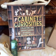 Cabinet of Curiosities, Collecting and Understanding the Wonders of the Natural World by Gordon Grice