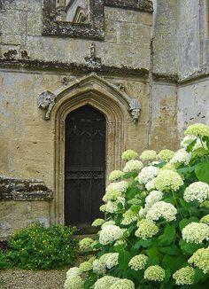 exterior inspiration: limestone patina / white hydrangea