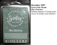 Family Reunions Scentsy And Reunions On Pinterest
