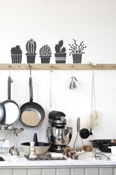 The tallest pot is approximately high. Succulent Pots, Succulents, Wall Decal, Range, Kitchen, Decor, Cookers, Cooking, Decoration