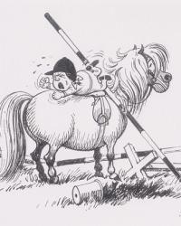 Pony-1.jpg