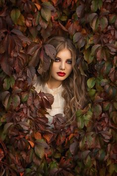 Photograph colors of autumn by Vikki U on 500px