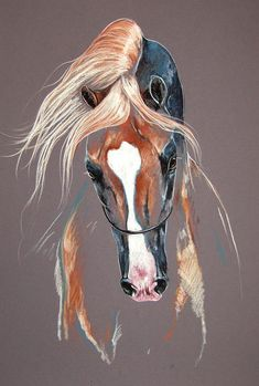 Draw Horses Palomino Arabian Horse Mixed Media by Paulina Stasikowska - Horse Drawings, Animal Drawings, Art Drawings, Drawing Art, Horse Sketch, Horse Artwork, Watercolor Horse, Horse Face, Equine Art