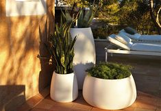 The exquisite Sahara Planters have gracious rounded curves and are made from durable rotationally moulded polyethylene which makes them weather resistant and great for the outdoors.   The planters are available in five different shapes and sizes and ...