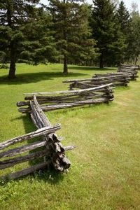 old fashioned fence. reminds me of the fences around the Shelburne Museum, Shelburne Vermont where I grew up! Except no lilacs and no apple trees :-)