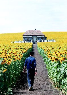 I had been looking for this scene for so so so long. Everything is illuminated
