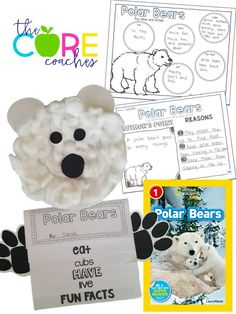 National Geographic Polar Bears writing and craft