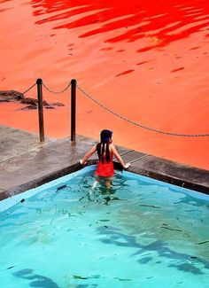Algae causes the water at Bondi Beach, Australia to turn bright red.
