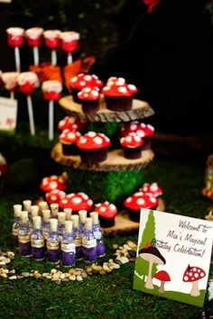 "Photo 3 of 16: woodland fairy / Birthday ""Mia's 9th birthday party"" | Catch My Party"