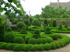 Burton House Garden - developed by Monique Paice and sympathetically maintained - prepare to fall in love