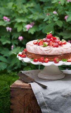 Dear Debigayle, I have a sweet Strawberry Sponge Cake waiting out in the garden for you to enjoy with a cup of Tea or Coffee. Hope you enjoy it and have a lovely day. Charlotte Au Fruit, Strawberry Sweets, Strawberry Fields, Strawberry Shortcake, Sweet Recipes, Cake Recipes, Cupcake Cakes, Cupcakes, Summer Cakes
