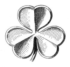 Public Domain Clip Art - Shamrocks - St. Patrick's Day - The Graphics Fairy