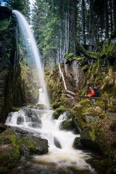 Albsteig Schwarzwald: Abenteuer im wilden Schluchtendschungel. Der neue Steig entlang der Alb erschließt dem Wanderer eine bislang recht unbekannte Ecke des südlichen Schwarzwalds.