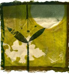This print is a gelatin monoprint on my handmade paper using pressed plants and stencils. The paper is oriental gampi fiber. kelly tankersley