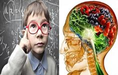 Top Ten Foods To Increase Brain Power