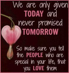We are only given TODAY and never promised TOMORROW. So make sure you tell the PEOPLE who are special in your life that you LOVE them. #quotes