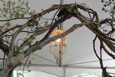 Birdcage chandelier hanging from branch arbor for outdoor party Birdcage Chandelier, Diy Wedding, Wedding Ideas, Sister Wedding, Garden Spaces, Bird Cage, Branches, My House, Wedding Decorations