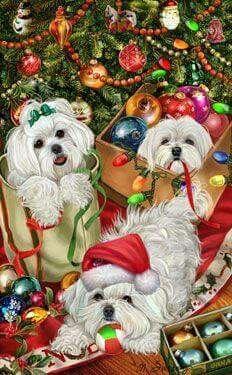 Maltese Christmas Christmas Animals 04c124dbe
