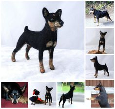needle felted miniature pinscher -Holly | Flickr - Photo Sharing!