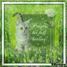 prayer for the sick - Google Search | Healing | Pinterest ...