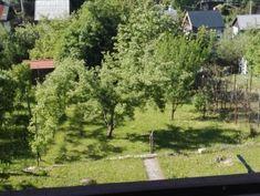 Predaj chaty v záhradkárskej osade v Stupave pri lese. | Nehnuteľnosti.sk Plants, Garden, Garten, Planters, Gardening, Outdoor, Home Landscaping, Plant, Tuin