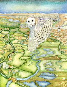 Kate-Green-Designs: Barn Owl over the Glaven Valley (print and card)