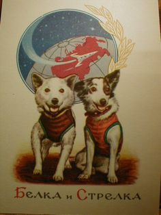 Belka and Strelka, heroic Cosmonaut dogs
