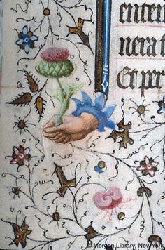 Book of Hours, MS fol. - Images from Medieval and Renaissance Manuscripts Medieval Manuscript, Medieval Art, Renaissance Art, Illuminated Letters, Illuminated Manuscript, Alchemy Art, Celtic Art, Celtic Dragon, Illumination Art