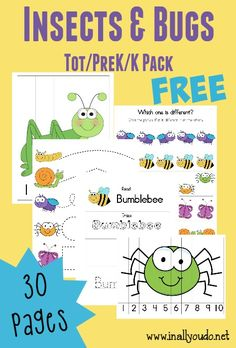 Insects & Bugs Tot & PreK/K printables Spring is the perfect time to learn all about those creepy, crawly Insects & Bugs that are coming out again! These funTot Packs & Emergent Readers are perfect for the little ones! Preschool Bug Theme, Preschool Curriculum, Preschool Printables, Preschool Science, Preschool Lessons, Preschool Classroom, Preschool Learning, In Kindergarten, Preschool Activities