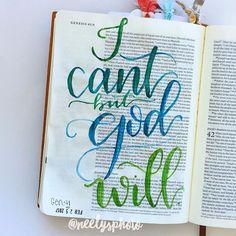 Geneiss 41:16 / neelysphoto