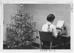 [Typist Near Christmas Tree, 1967] :: UNCG University Archives