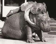 hippo love