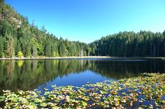 Roe Lake in Roesland, North Pender Island, Gulf Islands National Park, British Columbia, Canada