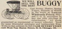 Buggy 1896