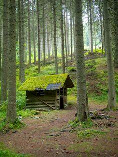 Die märchenhafte Hütte steht am Wanderweg (Rötenbackschlucht, Schwarzwald) #BlackForest